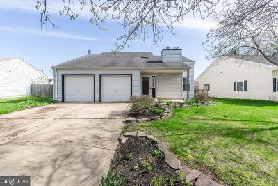 New Castle County Single Family Home For Sale: 15 Ferris Court