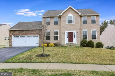 Newark Single Family Home For Sale: 462 Welsh Hill Road