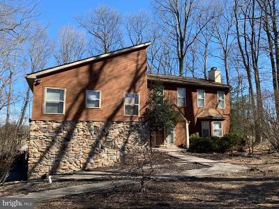 Hockessin Single Family Home For Sale: 17 Cinnamon Drive