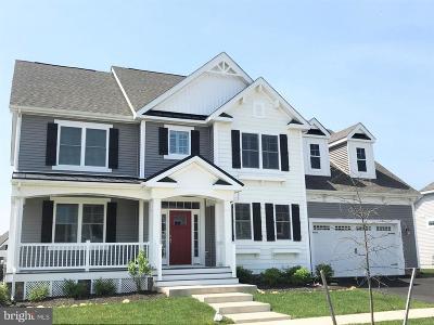 Middletown Single Family Home For Sale: 355 Ellenwood Drive