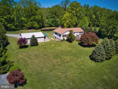 New Castle County Single Family Home For Sale: 765 Smyrna Landing Road