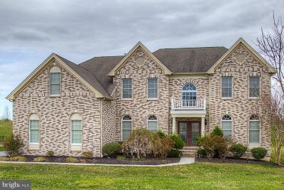 New Castle County Single Family Home For Sale: 733 Parkman Drive