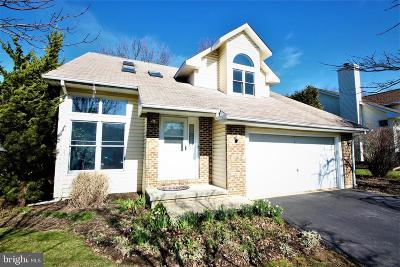 Wilmington Single Family Home For Sale: 827 Bess Lane