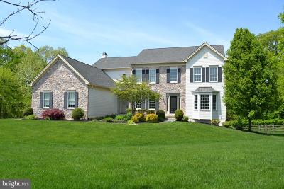 New Castle County Single Family Home For Sale: 420 Nattull Drive