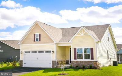 Single Family Home For Sale: 7000 Stonehaven Drive