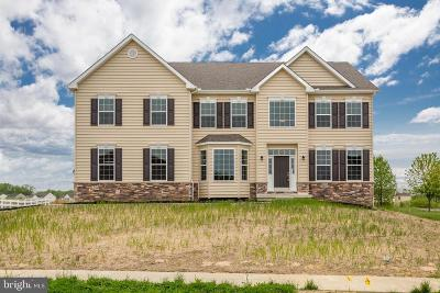 Townsend Single Family Home For Sale: 630 Ravenglass Drive