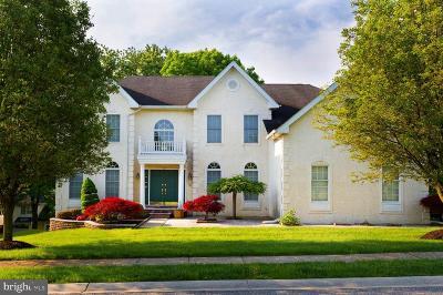 Hockessin Single Family Home For Sale: 204 Hockessin Circle