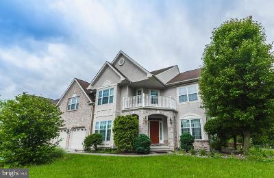 Newark Single Family Home For Sale: 43 Norwegian Wood Drive