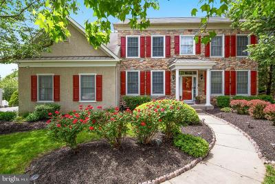 Newark Single Family Home For Sale: 100 Odessa Way