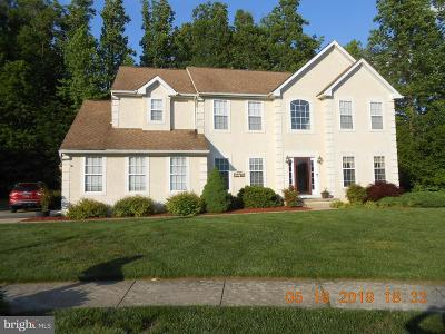 New Castle County Single Family Home For Sale: 105 Lilac Way