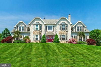 Hockessin Single Family Home For Sale: 12 Foxview Circle