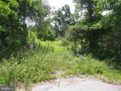 Townsend Residential Lots & Land For Sale: 4050 S Dupont Highway