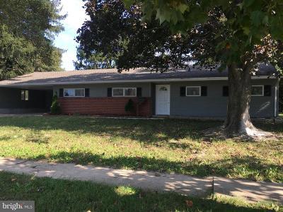 Newark Single Family Home For Sale: 802 S Chapel Street