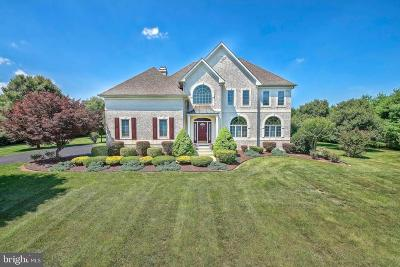 Middletown Single Family Home For Sale: 202 Bohemia Mill Pond Drive