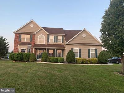 Townsend Single Family Home For Sale: 35 Basalt Street