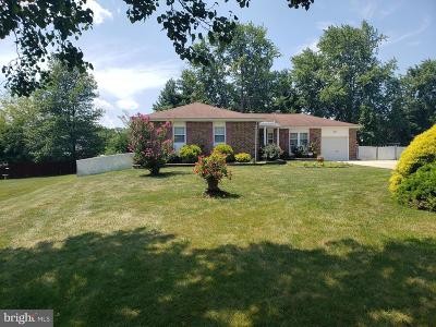 Wilmington Single Family Home For Sale: 807 Bezel Road