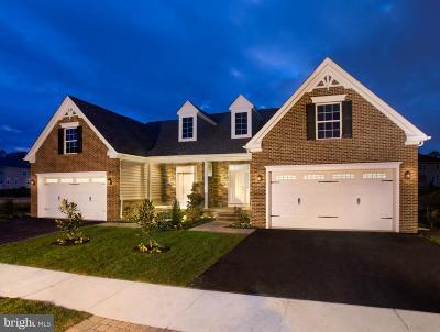 Single Family Home For Sale: 400 Sun Blvd