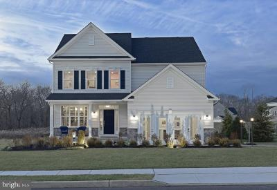 Single Family Home For Sale: 313 Appleford Circle