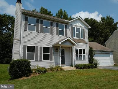 Newark Single Family Home For Sale: 202 Dunsmore Drive