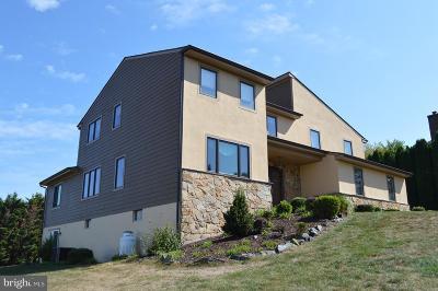 Hockessin Single Family Home For Sale: 205 Louis Lane