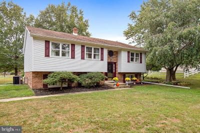 Middletown Single Family Home For Sale: 101 E Windmill Way