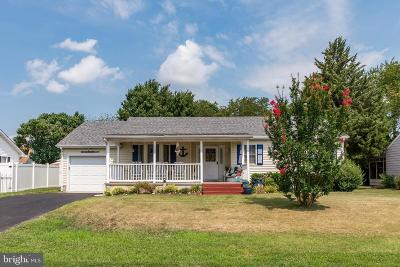 Rehoboth Beach Single Family Home For Sale: 202 Loganberry Lane