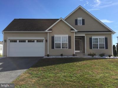 Rehoboth Beach Single Family Home For Sale: 34820 Mute Swan Lane