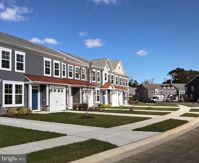 Rehoboth Beach Condo For Sale: 35733 Carmel Terrace #C-42