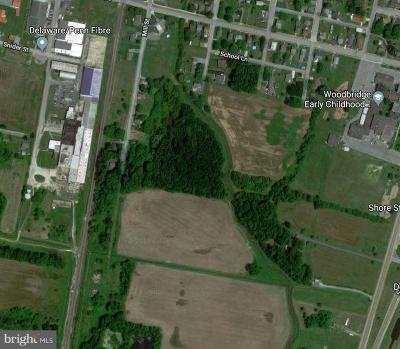 Greenwood Residential Lots & Land For Sale: 330 School Lane