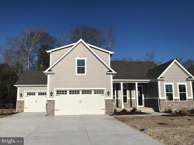 Sussex County Single Family Home For Sale: 39037 Crows Nest Lane