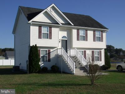 Sussex County Single Family Home For Sale: 210 Joanne Drive