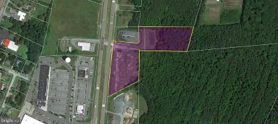 Sussex County Residential Lots & Land For Sale: Sussex Highway Route 13 N