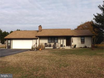 Laurel Single Family Home For Sale: 28763 Seaford Road