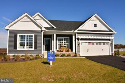 Lewes Single Family Home For Sale: Conley Chapel Rd