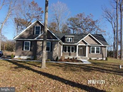 Georgetown Single Family Home For Sale: 18449 Gravel Hill Road