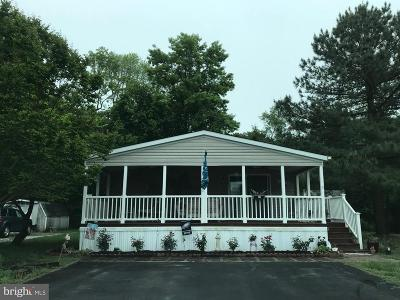Rehoboth Beach Single Family Home For Sale: 410 South Drive