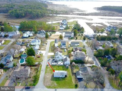 Rehoboth Beach Single Family Home For Sale: 21169 Bald Eagle Road