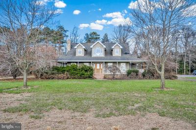 Millsboro Single Family Home For Sale: 28299 Will Chris Drive