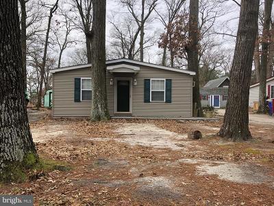 Single Family Home For Sale: 28516 Pocohontas Avenue #6737