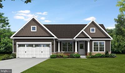 Single Family Home For Sale: 36852 Grove Estate Road