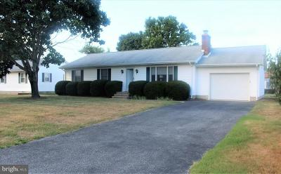 Rehoboth Beach Single Family Home For Sale: 119 Beachfield Drive