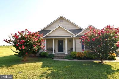 Milford Single Family Home For Sale: 12 Homestead Boulevard