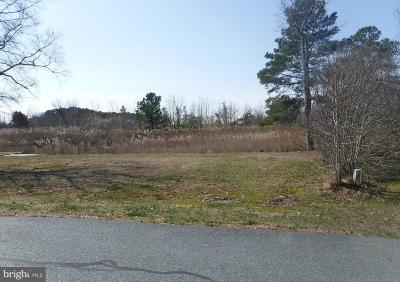 Selbyville Residential Lots & Land For Sale: 302 W Stoney Run