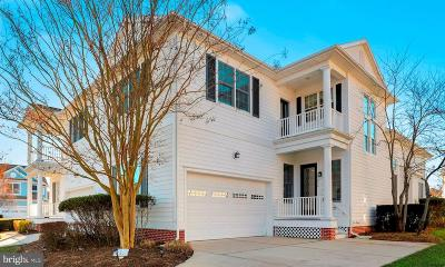 Selbyville Single Family Home For Sale: 31296 Inspiration Circle