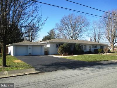 Sussex County Single Family Home For Sale: 701 Seabury Avenue