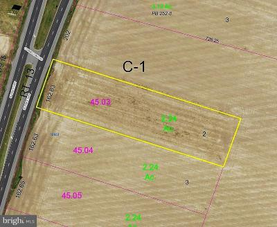 Greenwood Residential Lots & Land For Sale: 12771 Sussex Hwy. Route 13