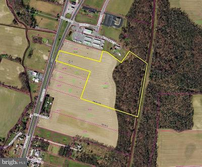 Greenwood Residential Lots & Land For Sale: 12771 E Sussex Highway, R E Route 13