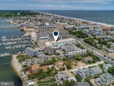Dewey Beach Single Family Home For Sale: 100 Collins Avenue #104