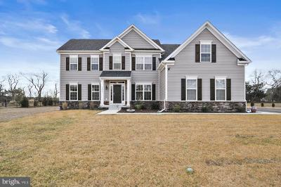 Lewes Single Family Home For Sale: 36867 Grove Estate Road