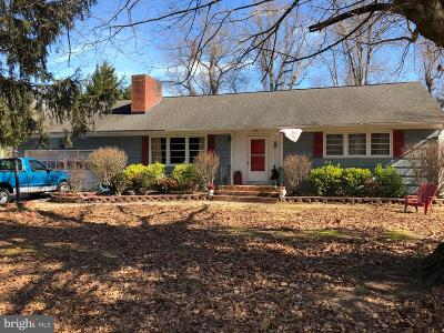 Sussex County Single Family Home For Sale: 28761 Kerlyn Drive